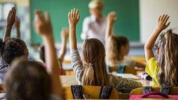 Back view of elementary students raising their arms on a class.