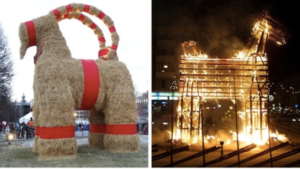 Christmas Goat.Lol City S Annual Giant Straw Christmas Goat Is Burned By