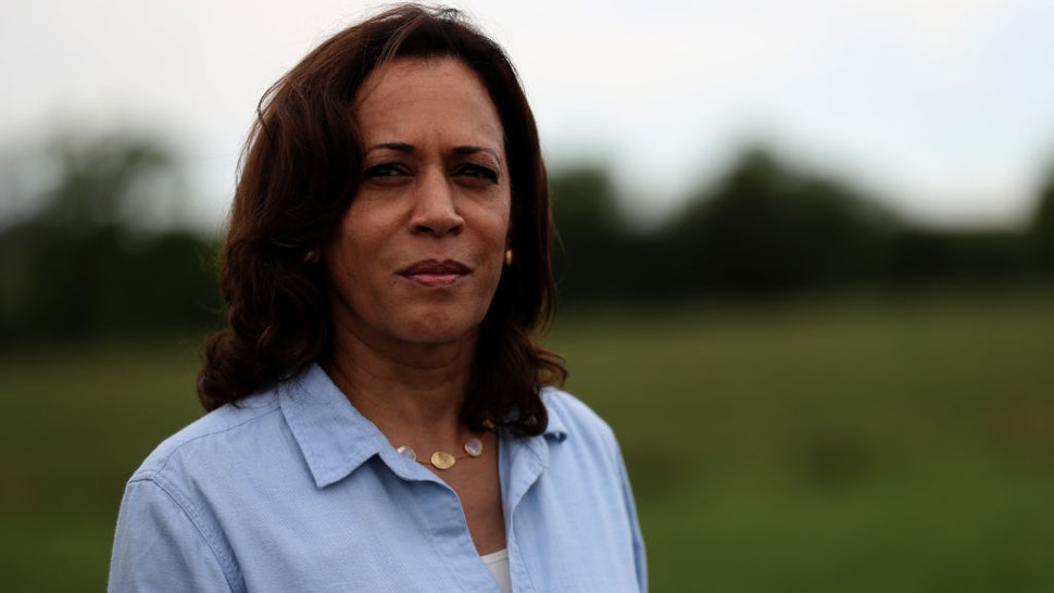 Kamala Harris looks on while touring the Coyote Run Farm on August 11, 2019 in Lacona, Iowa.