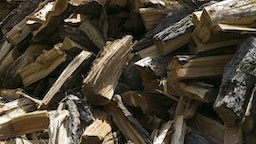 Group of Logs in woodstore - stock photo