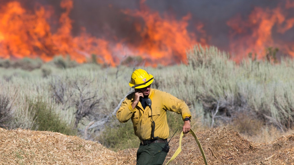 A firefighter maneuvers a hose at the Blue Cut wildfire in Wrightwood, California on August 17, 2016. A rapidly spreading fire raging east of Los Angeles forced the evacuation of more than 82,000 people as the governor of California declared a state of emergency. / AFP / JONATHAN ALCORN (Photo credit should read JONATHAN ALCORN/AFP via Getty Images)