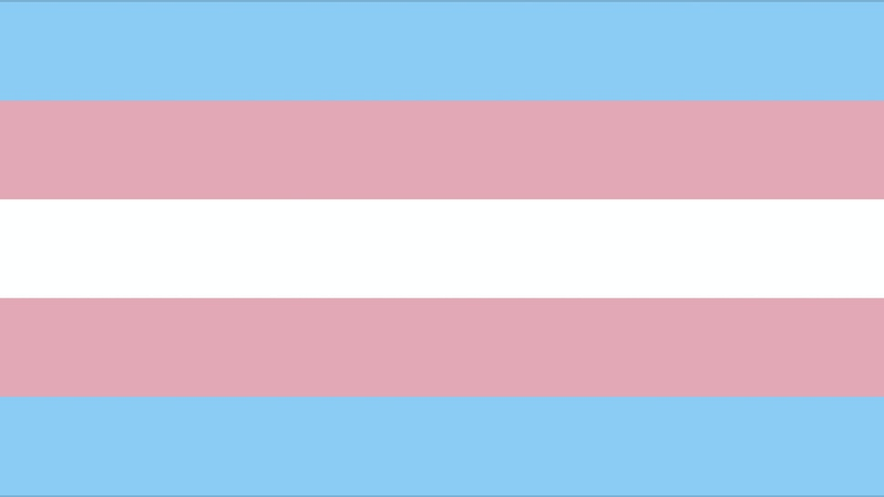Transgender pride flag -- rectangle, horizontal flag with blue, pink, white, pink, blue stripes.