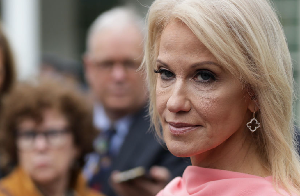 'Who The Hell Are You, Lady?': Kellyanne Conway Targets Pamela Karlan For 'Barron' Dig