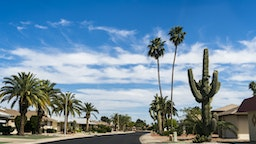 Sun City NW of Phoenix Arizona. A community dedicated to a more leisurely lifestyle and unending choices of recreation for the retired, active adult. A community of pristine streets and well maintained gardens.