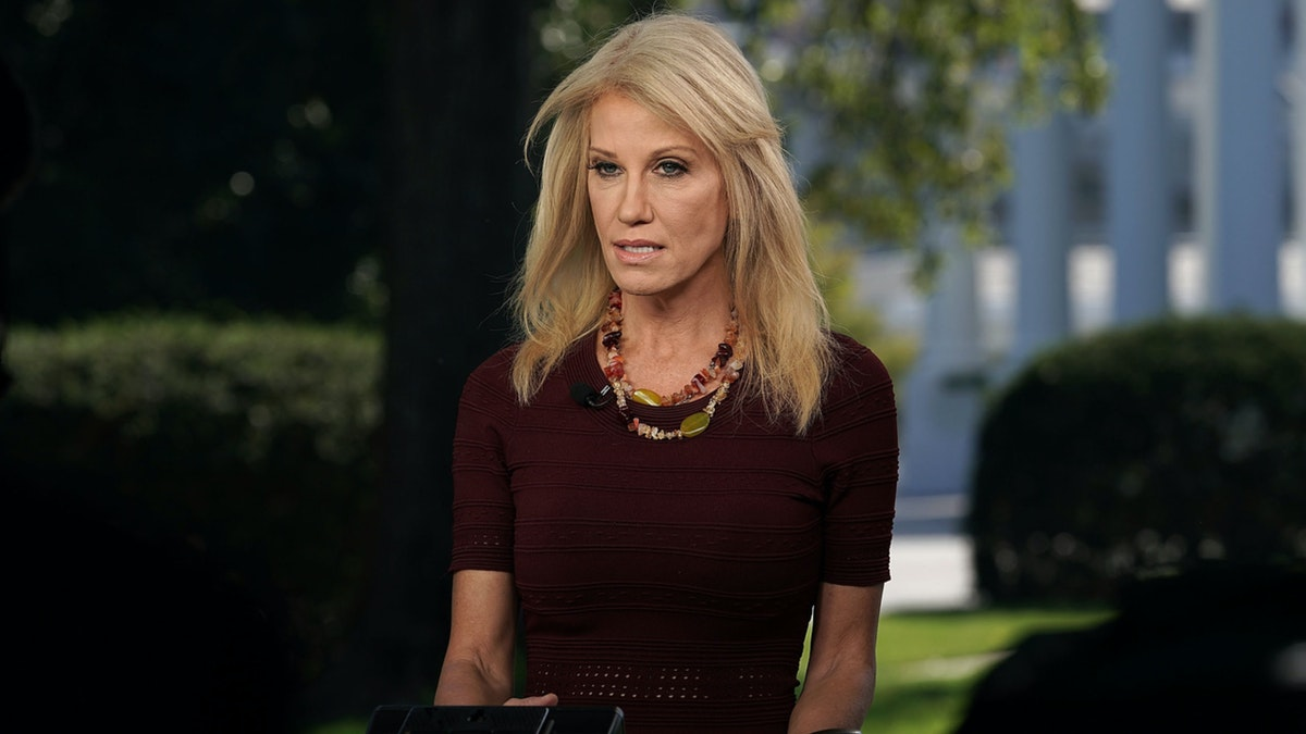 WATCH: Conway Blasts Bloomberg Over 'Stop And Frisk'; Chris Wallace Quotes Trump Saying It Had 'Tremendous Impact'