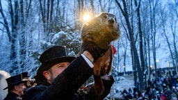PUNXSUTAWNEY, PA - FEBRUARY 02: Groundhog handler AJ Dereume holds Punxsutawney Phil, who did not see his shadow, predicting an early or late spring during the 134th annual Groundhog Day festivities on February 2, 2020 in Punxsutawney, Pennsylvania. Groundhog Day is a popular tradition in the United States and Canada. A crowd of upwards of 20,000 people spent a night of revelry awaiting the sunrise and the groundhog's exit from his winter den. If Punxsutawney Phil sees his shadow he regards it as an omen of six more weeks of bad weather and returns to his den. Early spring arrives if he does not see his shadow, causing Phil to remain above ground.