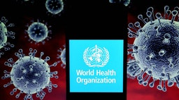 In this photo illustration a World Health Organisation (WHO) logo seen displayed on a smartphone with a computer model of the COVID-19 coronavirus in the background. (Photo Illustration by Avishek Das/SOPA Images/LightRocket via Getty Images)