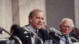 Biden 1991