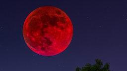 Blood moon on night sky
