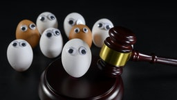 A white egg face is been judge. There are also brown eggs faces within the public. Anti-racism concept. - stock photo