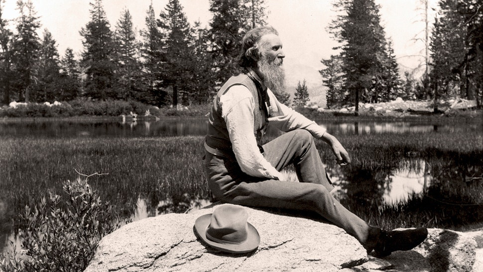 John Muir (1838-1914) Scottish-born American naturalist, engineer, writer and pioneer of conservation. Campaigned for preservation of US wilderness including Yosemite Valley and Sequoia National Park. Founder of The Sierra Club.