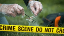 Cropped Hands Collecting Evidence At Crime Scene - stock photo