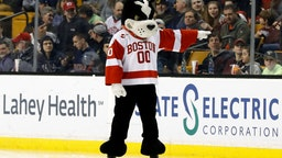 BU mascot Rhett before a Hockey East semifinal between the Boston University Terriers and the Boston College Eagles on March 17, 2017 at TD Garden in Boston, Massachusetts.