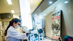 A scientist works at the Neurobiology laboratory of the Cayetano Heredia University in Lima, on June 27, 2020. - A group of Peruvian scientists designed a molecular test to detect the COVID-19 coronavirus in just 40 minutes, one of the researchers reported. (Photo by Ernesto BENAVIDES / AFP) (Photo by ERNESTO BENAVIDES/AFP via Getty Images)
