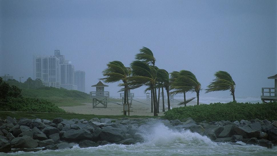 Hurricane Along Coastline