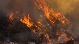 WRIGHTWOOD, CA - AUGUST 18: Flames spread up a hillside near firefighters at the Blue Cut Fire on August 18, 2016 near Wrightwood, California.. An unknown number of homes and businesses have burned and more than 80,000 people were ordered to evacuate as the wildfire spreads beyond 30,000 acres and threatens to expand into the ski resort town of Wrightwood. (Photo by David McNew/Getty Images)