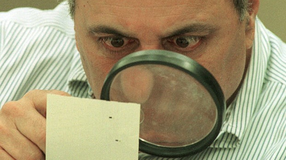 382382 01: Judge Robert Rosenberg of Broward County Canvassing Board uses a magnifying glass to view a dimpled chad on a punch-hole ballot November 24, 2000 during a recount of votes in Fort Lauderdale, Florida. The Broward County Canvassing Board will continue their recount of ballots until the November 26, 2000 deadline set by the Florida State Supreme Court. (Photo by