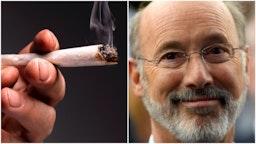 Tom Wolf marijuana