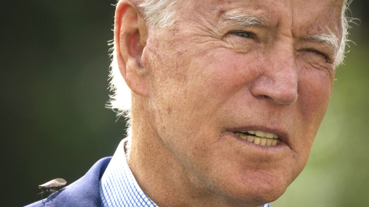 Biden: Voting For 'Climate Arsonist' Trump Could Cause Suburbs To Be 'Blown Away In Superstorms'