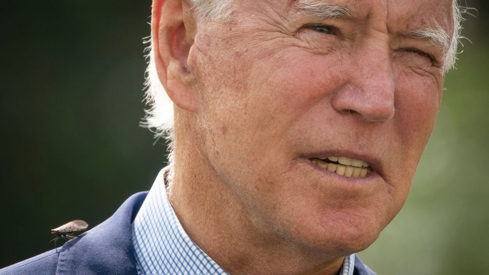 A spotted lanternfly, a species indigenous to certain Asian countries but considered invasive in the U.S. and for which the Delaware Department of Agriculture issued a quarantine in 2019, lands on the shoulder of Democratic presidential nominee Joe Biden as he speaks about climate change and the wildfires on the West Coast at the Delaware Museum of Natural History on September 14, 2020 in Wilmington, Delaware.