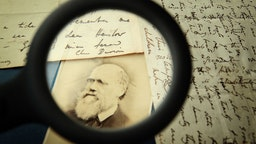 ONDON, ENGLAND - MARCH 25: Original letters from Charles Darwin are displayed at the Herbaruim library on March 25, 2009 at the Royal Botanic Gardens, Kew in London. Darwin wrote the letter (R) to his mentor Reverend John Henslow aboard HMS Beagle in April 1833 - writing two ways - as paper was expensive. (Photo by Peter Macdiarmid/Getty Images)