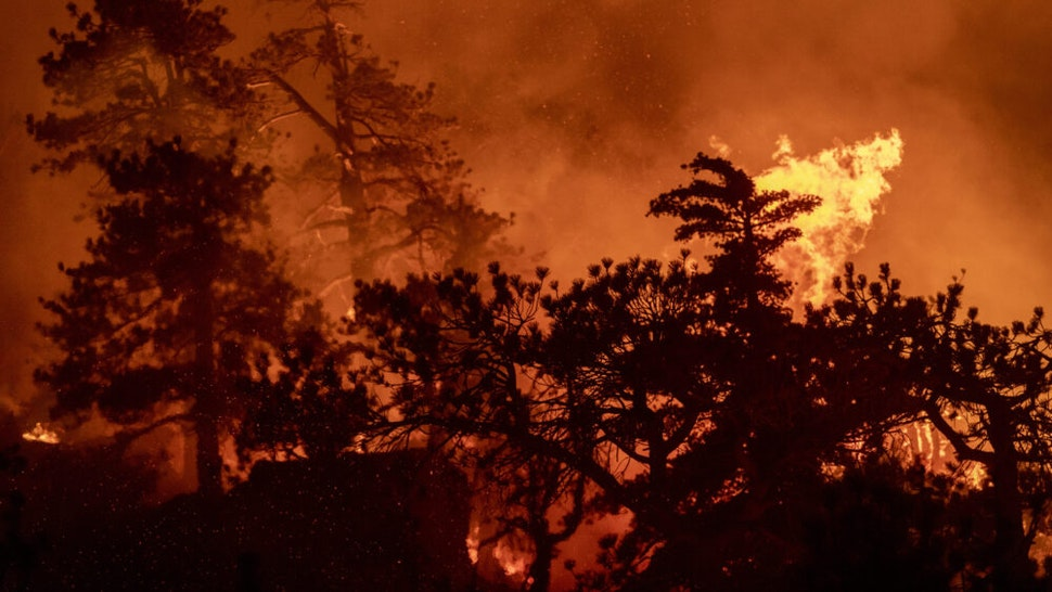 MONROVIA, CA - SEPTEMBER 16: A forest is incinerated near Cooper Canyon in the Angeles National Forest as the Bobcat Fire burns out of control on September 16, 2020 north of Monrovia, California. The fire, burning in the San Gabriel Mountains northeast of Los Angeles, has grown to more than 50,000 acres and is only 3% contained.