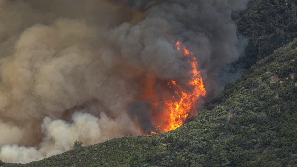 The Bobcat Fire runs deeper into the Angeles National Forest on September 10, 2020 north of Monrovia, California. California wildfires that have already incinerated a record 2.3 million acres this year and are expected to continue till December. The Bobcat Fire has grown to about 24,00 acres, and is 6% contained.
