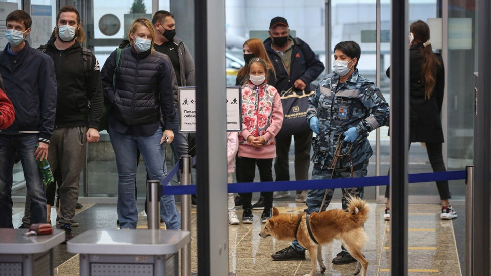 An employee handles a sniffer dog during an explosive material detection patrol by the passenger security check queue in the departures terminal at Sheremetyevo International Airport OAO in Moscow, Russia, on Friday, Oct. 9, 2020.