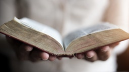 Woman reading holy bible. - stock photo Woman reading holy bible.