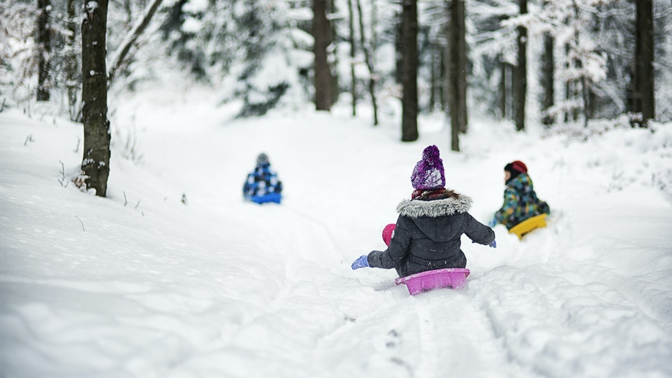 Three kids tobogganing on snowy path in winter forest, Cold winter day. Back view.
