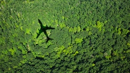 Plane over forest.
