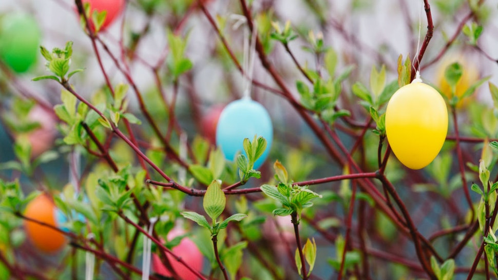 Easter eggs hang on a tree in Cologne, Germany on March 24, 2021