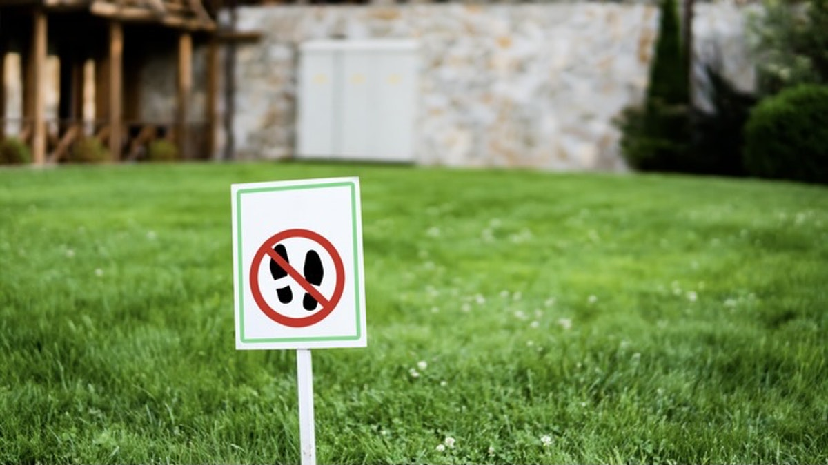 Las Vegas Moves To Ban Certain Types Of Grass In Conservation Effort