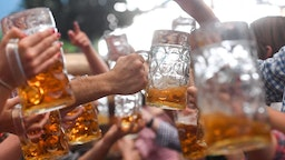 Visitors of the Oktoberfest beer festival clink their beer glasses on September 24, 2017 at the Theresienwiese fair grounds in Munich, southern Germany. The World's largest beer festival takes place until October 3, 2017. / AFP PHOTO / dpa / Tobias Hase / Germany OUT