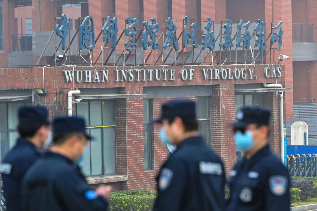 New Disturbing Details Emerge About Activities Involving The Wuhan Institute Of Virology