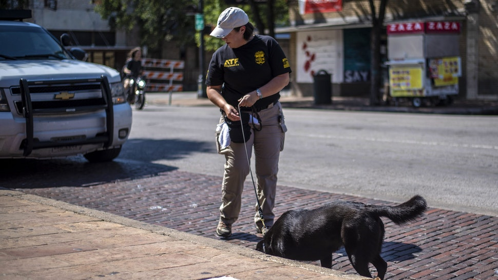 AUSTIN, TX - JUNE 12: An ATF K9 unit surveys the area near the scene of a shooting on June 12, 2021 in Austin, Texas. At least 13 people were taken to hospitals after a shooting happened on Austin's famous 6th Street. The shooter is still at large.