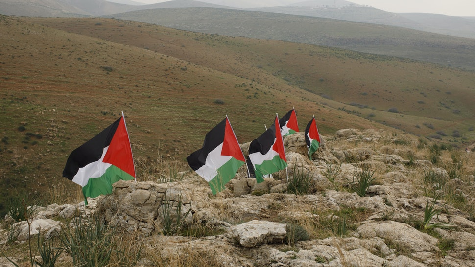 Palestinian flags stand in the Jordan Valley, West Bank.