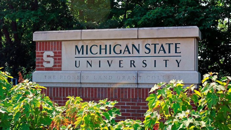 Michigan State University entrance sign.