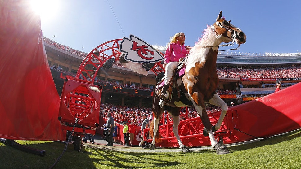 KANSAS CITY, MO - OCTOBER 13: Kansas City Chiefs cheerleader Susie rides Warpaint onto the field for the pre-game festivities before a game against the Oakland Raiders on October 13, 2013 at Arrowhead Stadium in Kansas City, Missouri.