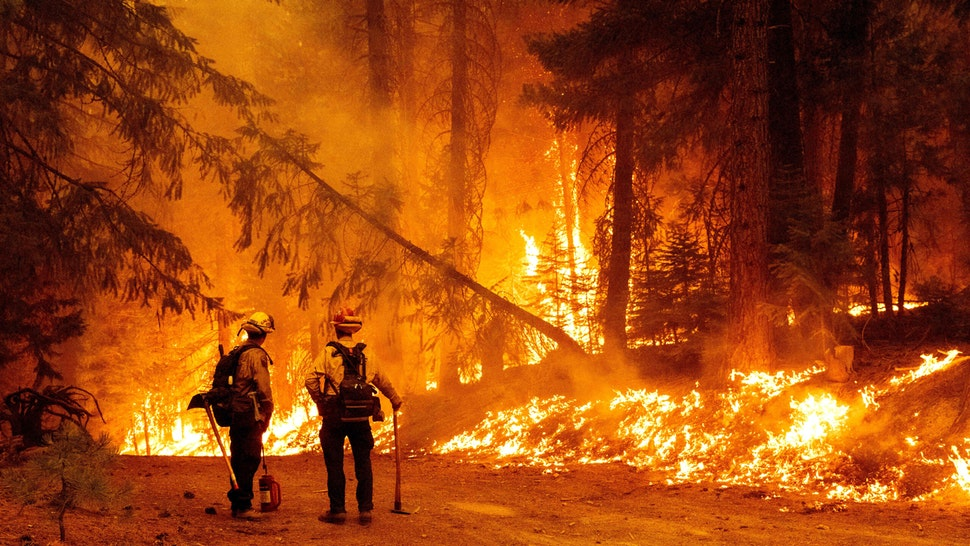 """TOPSHOT - Cal Fire firefighters monitor a backfire they lit to stop the spread of the Dixie fire in the Prattville community of unincorporated Plumas County, California on July 23, 2021. - The Dixie fire, which started only a few miles from the origin of the deadly Camp fire, has churned through more 150,000 acres and continues to burn towards rural communities. Several villages were evacuated in the face of the advancing """"Dixie Fire"""", which is suspected to have been caused by a tree falling on power cables."""
