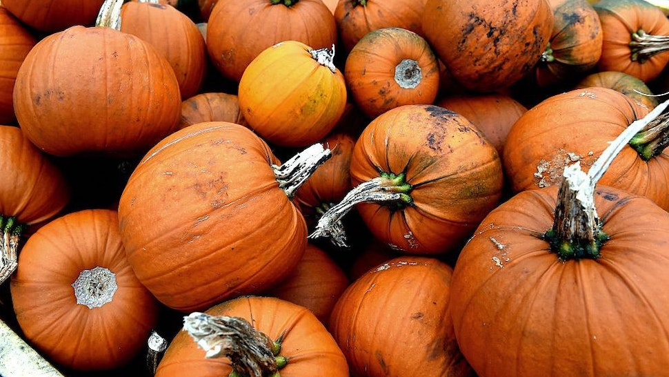 Pumpkins are stacked in crates at a farm in Lydiate, near Liverpool, north-west England on October, 14, 2014, as they are prepared for sale in the weeks leading up to the celebration of Halloween. AFP PHOTO/PAUL ELLIS